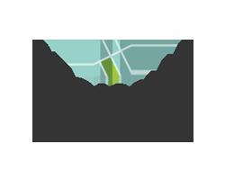 regional planning color icon